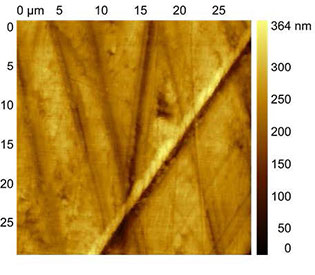 (Figures 1 and 2) AFSEM image of a polymer surface obtained in contact mode.