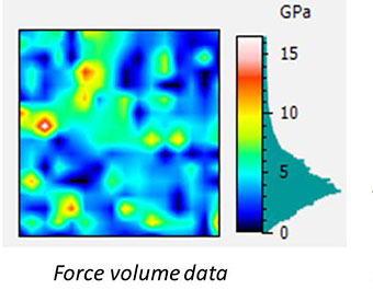 AFSEM image of bone sample with a partially dissolved implant obtained in force volume mode. (Figure 2) Force volume data of the same area.